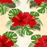 Seamless texture bouquet with tropical flowers Hawaiian style floral arrangement, with beautiful hibiscus, palm,philodendron and f. Icus vintage vector royalty free illustration