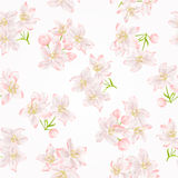 Seamless texture branch of apple tree with flowers vector Stock Photography