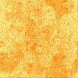 Seamless  texture brick wall Royalty Free Stock Photography