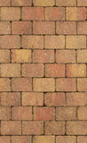 Seamless texture of brick wall Stock Images