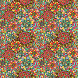 Seamless texture with bright colorful flowers Stock Images
