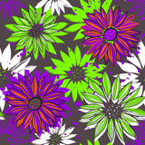 Seamless texture with bright flowers Stock Images