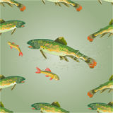 Seamless texture  brook trout  predator vector Royalty Free Stock Photos