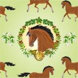 Seamless  texture Brown  horse head of stallion vector Royalty Free Stock Photos