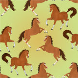 Seamless texture brown horses vector. Seamless  texture brown horses exteriors vector illustration Royalty Free Stock Photo
