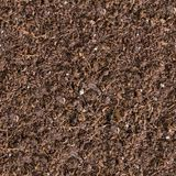 Seamless Texture of Brown Soil. Stock Photos