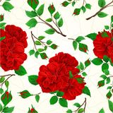 Seamless texture buds red roses and buds cracks in the porcelain vintage vector illustration editable. Hand draw Royalty Free Stock Images