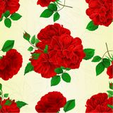 Seamless texture bunch Three red roses with  buds and simple rose vintage  festive background vector illustration editable Stock Photos