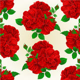 Seamless texture bunch Three red roses with  buds vintage editable festive background vector Stock Photography