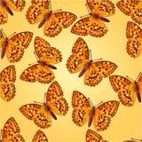 Seamless texture butterfly Argynnis aglaja  vector Stock Photo