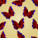 Seamless texture butterfly Nymphalis antiopa  vector Royalty Free Stock Image