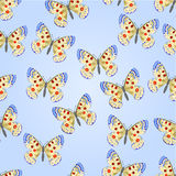 Seamless texture butterfly Parnassius vector Stock Image