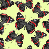 Seamless texture Butterfly Vanessa cardui vector Stock Images