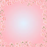 Seamless texture cherry blossoms frame vector Royalty Free Stock Photo