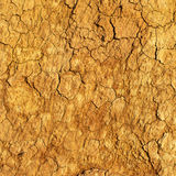 Seamless texture - clay soil in the context of Stock Photography