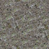 Seamless Texture of Coastal Land. Stock Photo