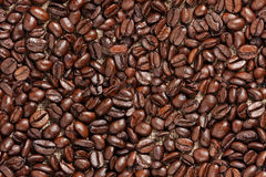 Seamless texture of coffee Royalty Free Stock Photos
