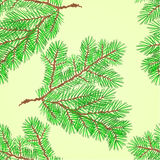 Seamless texture Conifer Spruce branch nature background Vector Royalty Free Stock Image