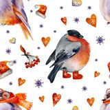 The birds dressed in a winter clother stock illustration
