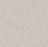 Seamless  texture cracked. Vector pattern with cracks. Royalty Free Stock Photography