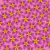 Seamless texture with crimson flowers Royalty Free Stock Image