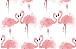 Seamless texture with delicate pink flamingos. With watercolor splashes. Vector background fabric, wallpaper, background for your site and your creativity Royalty Free Stock Image