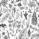 Seamless texture depicting children`s drawings of leaves and branches drawn quickly by hand. Sketch vector graphics monochrome drawing Stock Photo