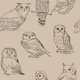 Seamless texture with different owls in retro style Royalty Free Stock Image