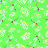 Seamless texture, dragonflies and camomiles. Stock Photography