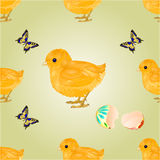 Seamless texture Easter chick vector Stock Images