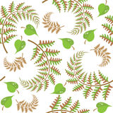 Seamless texture with ferns and leaves. Vector seamless texture with ferns and green leaves Royalty Free Stock Photography