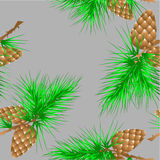 Seamless texture with fir cones Stock Image