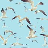 Seamless texture with a flock of seagulls flying. On a blue background, illustration vector illustration