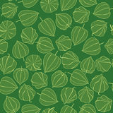 Seamless texture with floral ornament. Seamless pattern with green floral theme winter cherry Royalty Free Stock Photos