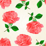 Seamless texture flower pink rose twig with leaves crack vintage hand draw vector. Illustration Stock Photography