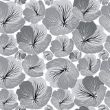 Seamless texture with  flowers. Black and white graphic Royalty Free Stock Image