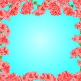 Seamless texture frame of pink hibiscus vector Stock Photo