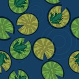 Seamless texture of frogs on lily pads on a pond. Vector illustration royalty free illustration