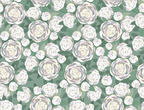 Seamless texture with gentle white flowers Royalty Free Stock Photos