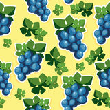 Seamless texture with grapes. Seamless texture pattern of blue grapes Stock Image