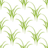 Seamless texture of grass Royalty Free Stock Photos