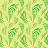Seamless texture with green fern leaves Stock Photo