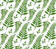 Seamless texture with green ferns and leaves Royalty Free Stock Image