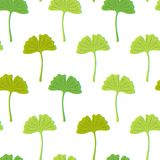 Seamless texture with green ginkgo leaves on a white. Background stock illustration