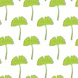 Seamless texture with green ginkgo leaves on a white. Background vector illustration