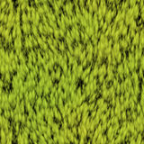 Seamless texture of green grass Stock Images