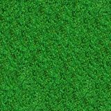 Seamless Texture. Green Meadow Grass. Stock Image