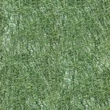 Seamless texture of green sisal cloth. Royalty Free Stock Photos