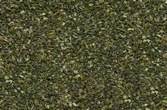 Seamless texture of green tea. Texture of green tea closeup. Seamless pattern Stock Photography