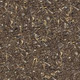 Seamless Texture of the Ground with Dry Herbs. Royalty Free Stock Photos